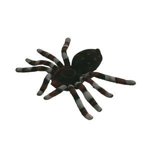 Spindel - 15 cm