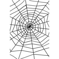 Enormt spindeln�t med spindel