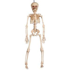 Hängande skelett 41 cm