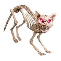 Skelettkatt